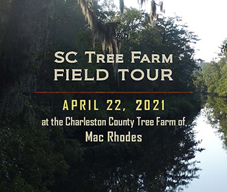 SC Tree Farm Field Tour
